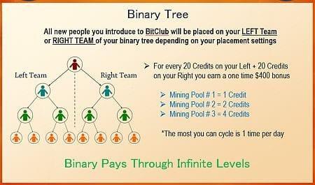 Bitclub Network Primary
