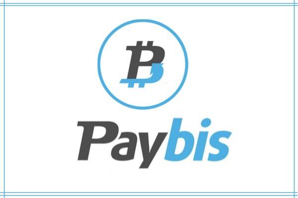 Paybis Image